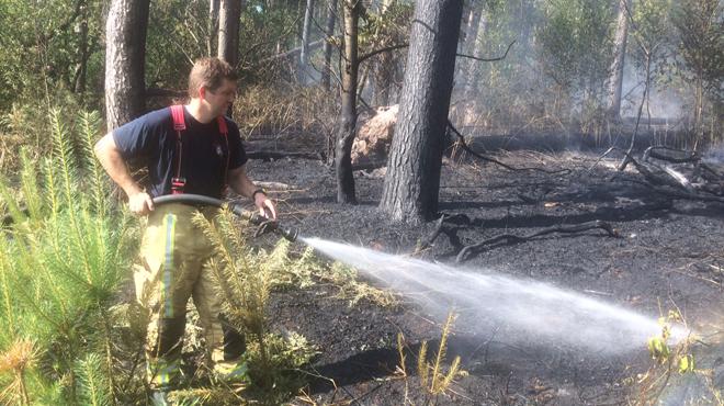 Gros incendie dans le bois de Bérines — Baisy-Thy