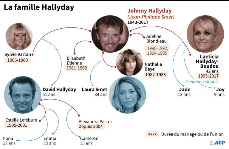 Les avocats de David Hallyday veulent un report — Héritage de Johnny