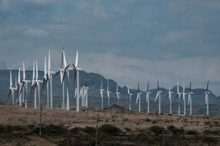 RTL Today - Wilderness wind farm: Kenya launches Africa's biggest