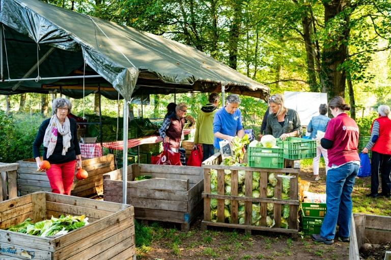 Changement climatique :Aux Pays-Bas poussent des fermes d'un nouveau genre
