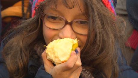 Test d'urine :Test en Belgique: tous les enfants étaient contaminés aux insecticides