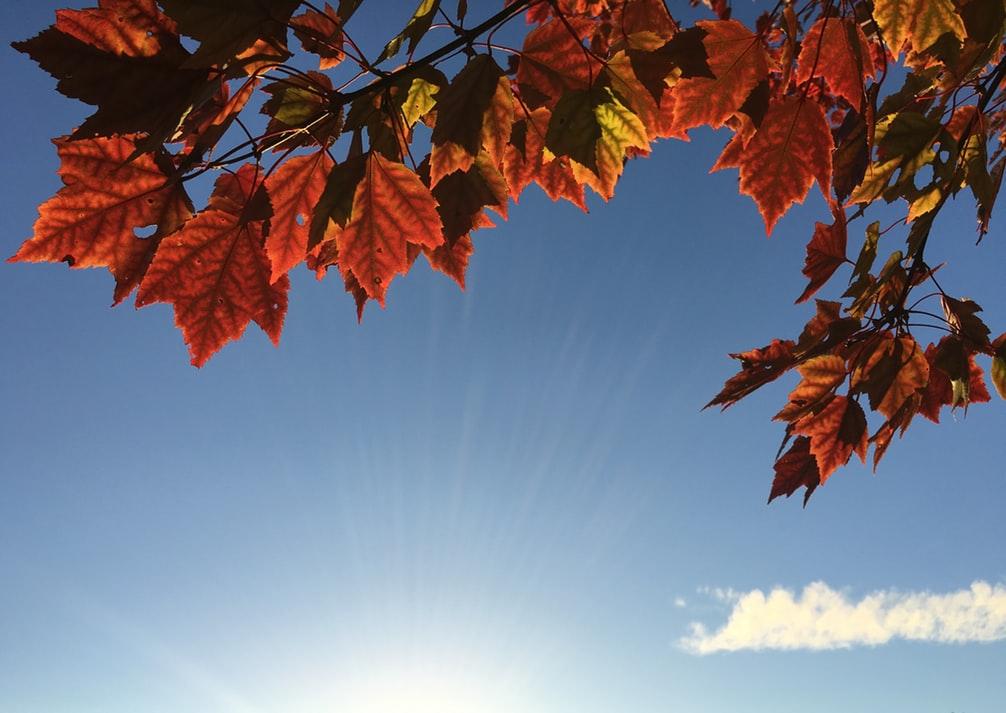 Météo :Dernier beau jour avant l'automne