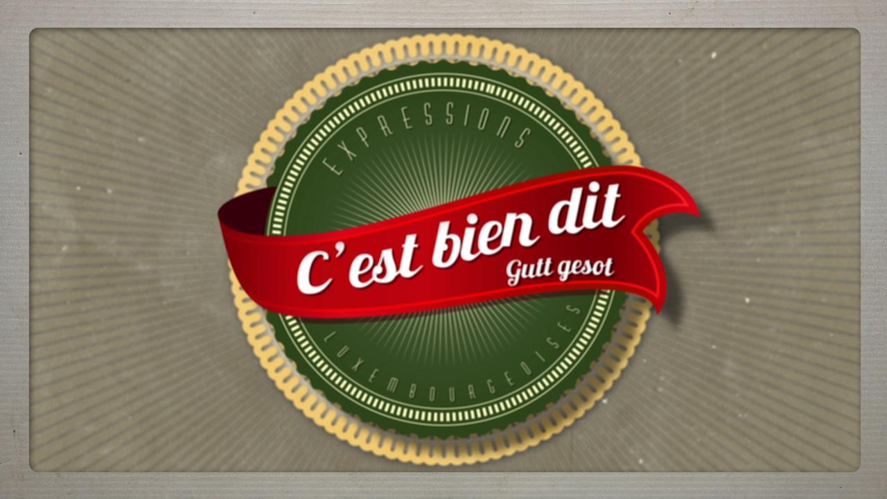 Il n'y a pas de fumée sans feu :Les expressions luxembourgeoises décodées