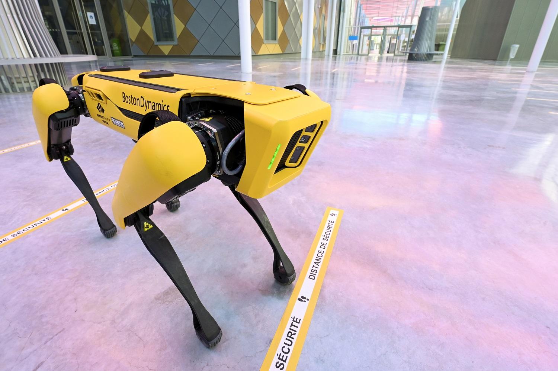 Nancy :Un robot-chien pour remplacer l'homme dans les endroits dangereux