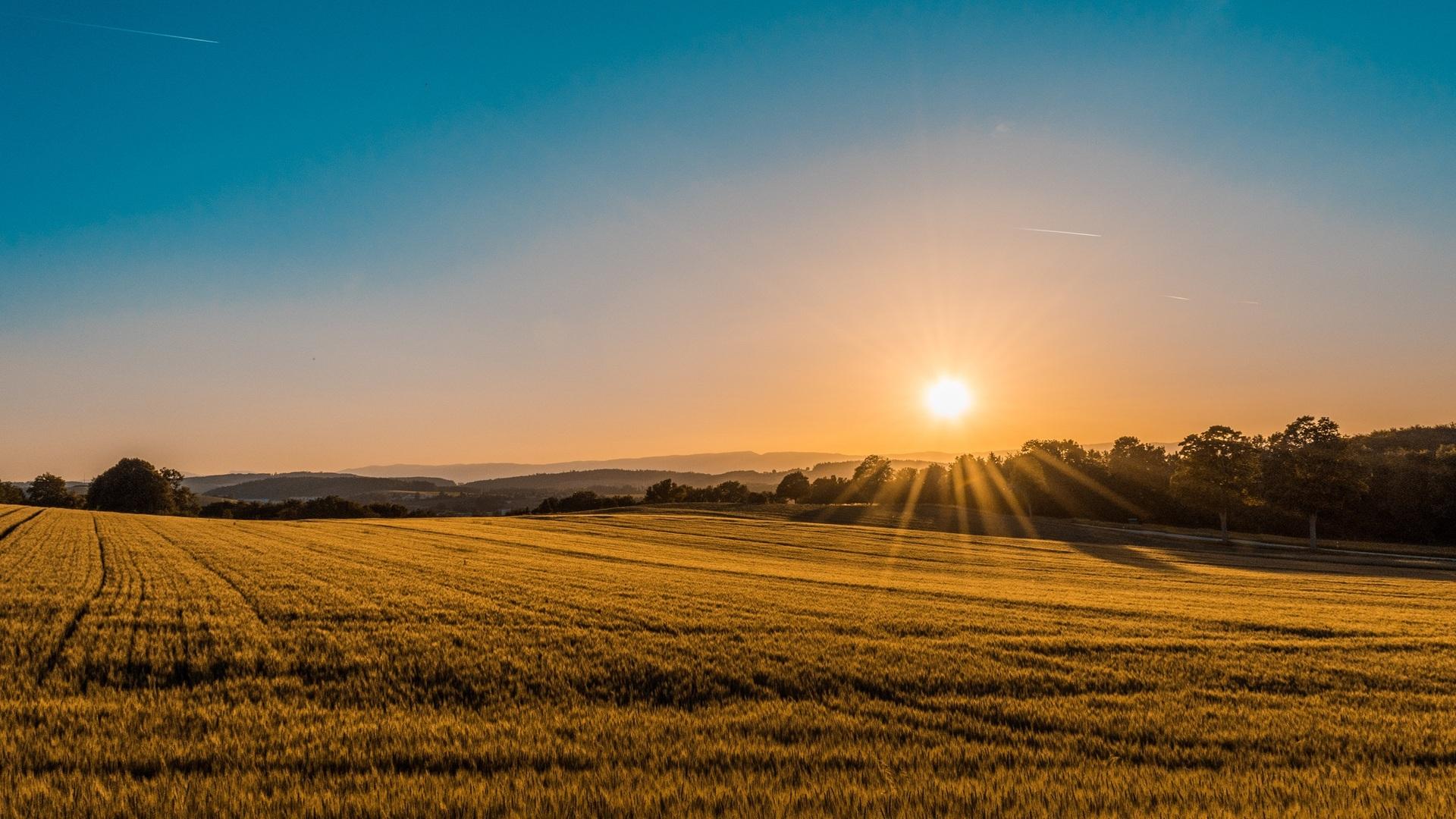 Luxembourg :Un peu de soleil et de douceur ce week-end