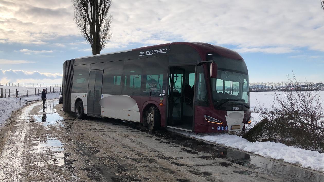 Accidents, chute d'arbres, bouchon :La neige provoque la pagaille sur les routes