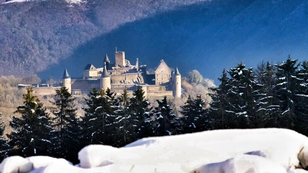 Jusqu'à 14 cm de neige :Vos plus belles photos de la neige au Luxembourg et aux frontières